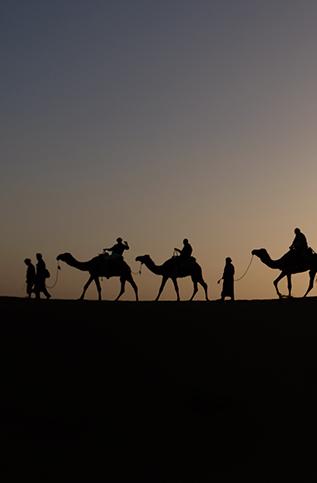ADVENTURE in the Judean Desert